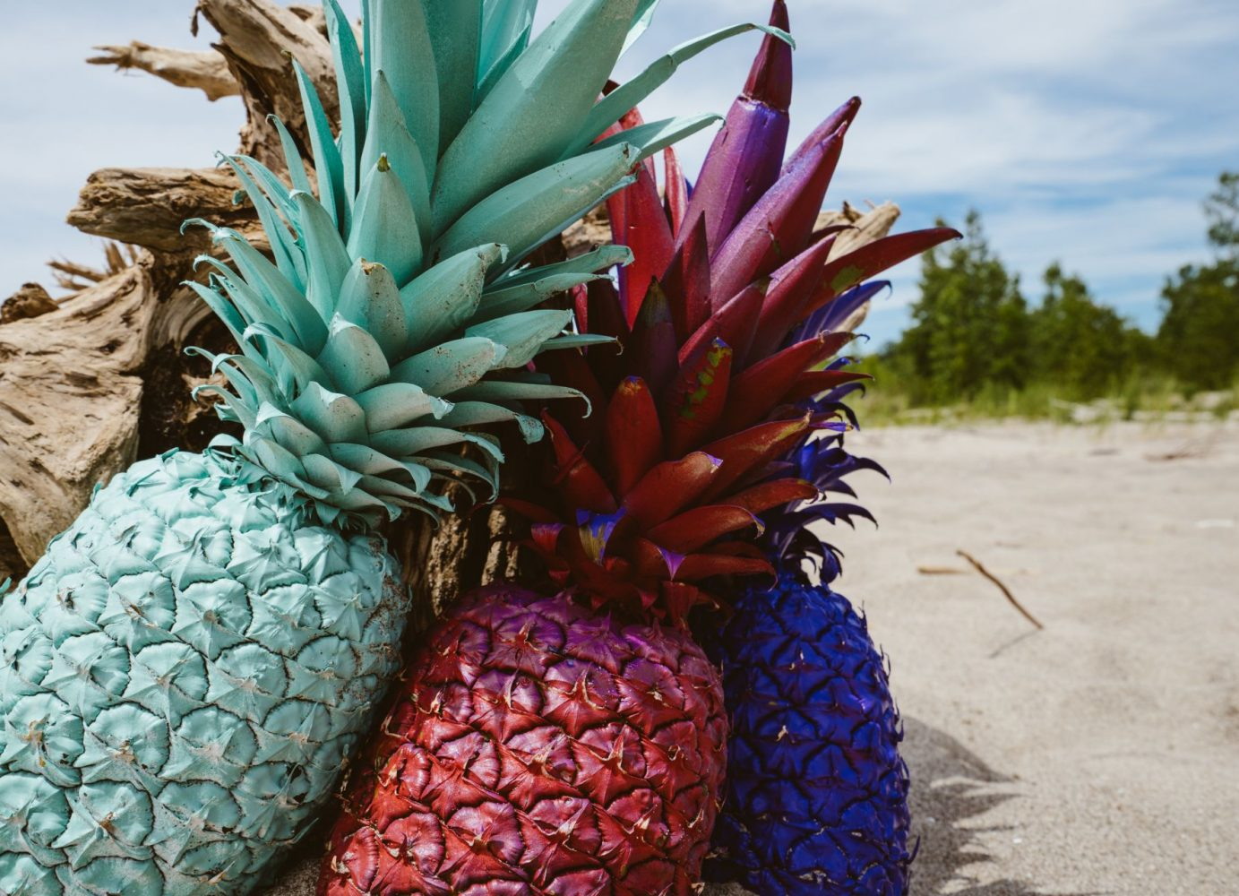 Colorful Pineapples